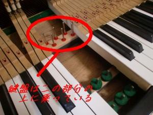 鍵盤 高さ調整