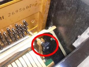 ピアノ 虫食い